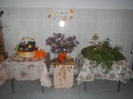 c_195_145_16777215_00_images_DSCN3330.JPG